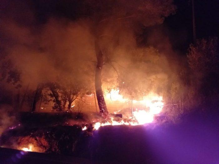 Tres incendis presumptament intencionats la passada nit a Alzira