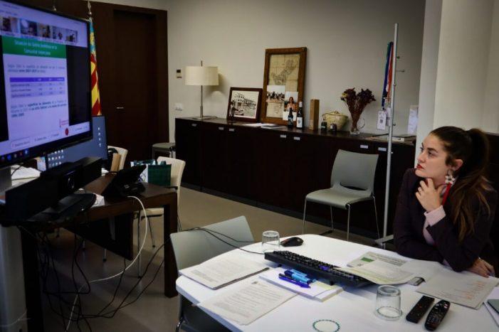 La Xylella fastijosa atenua la seua expansió en la Comunitat Valenciana
