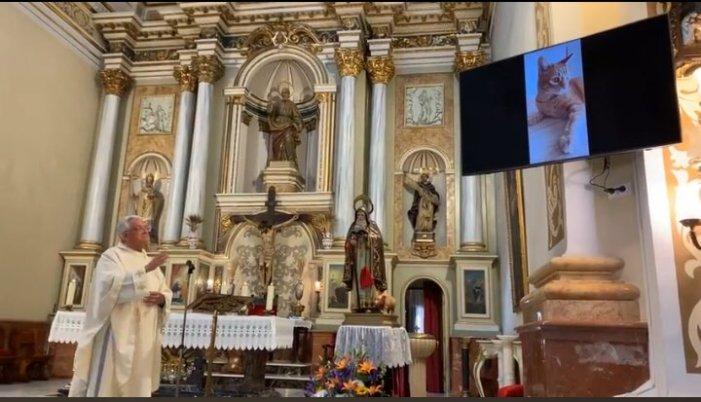 Benedicció virtual a Benifaió en la festivitat de Sant Antoni