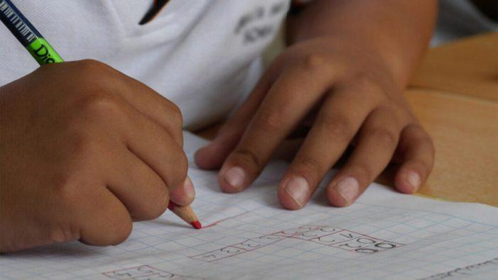 Sueca tornarà a oferir el servei d'Escola d'Estiu