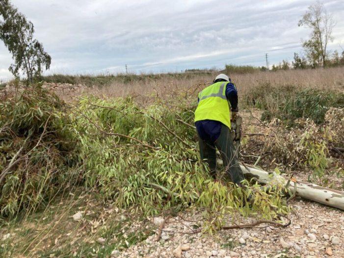 La Confederació Hidrogràfica del Xúquer iniciarà la regeneració ambiental del llit  del riu Magre a Carlet