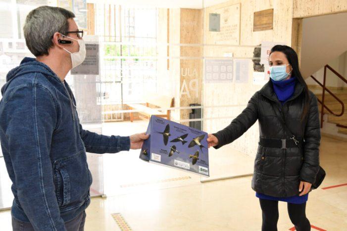 Paiporta inicia una campanya per a protegir les oronetes