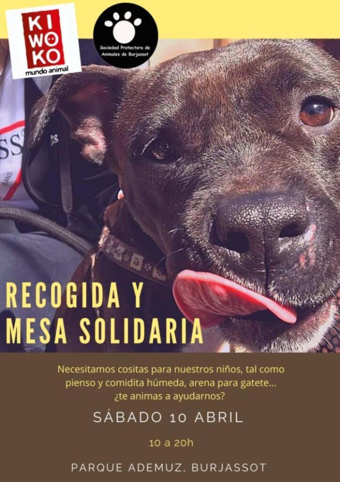 La Societat Protectora d'Animals de Burjassot organitza una nova recollida solidària en el Centre Comercial Ademuz