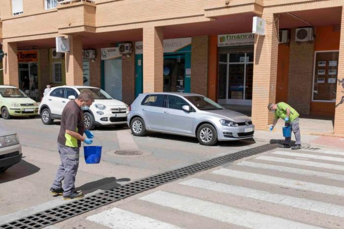 L'Ajuntament de Picassent realitza tractaments contra el mosquit tigre al municipi