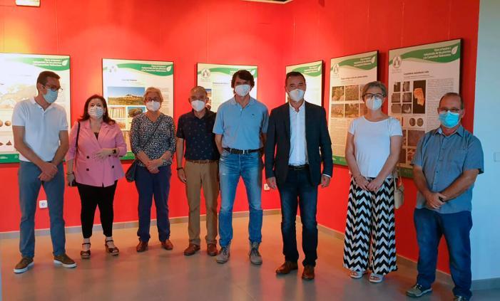 L'exposició itinerant 'Usos artesans i industrials de les plantes en la Comunitat Valenciana' arriba a Riba-roja de Túria