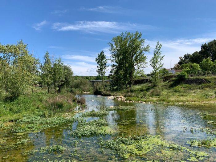 Viles en Flor potencia el turisme verd en els 35 municipis valencians amb aquest distintiu