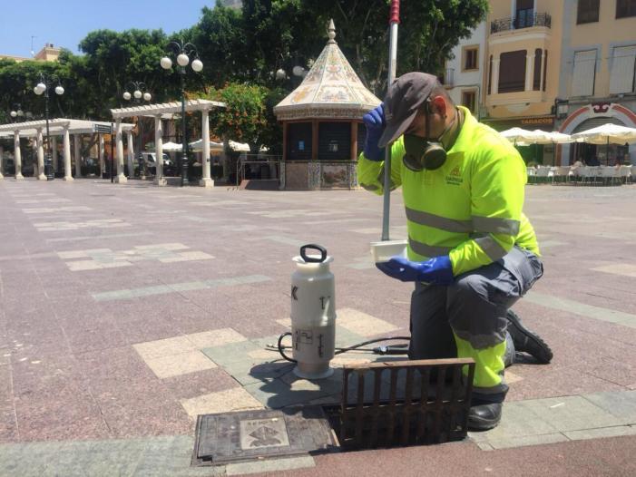 Comencen a Alzira els tractaments del mes de juny contra el mosquit tigre