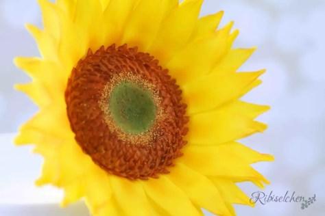 Sonnenblumen Torte 7