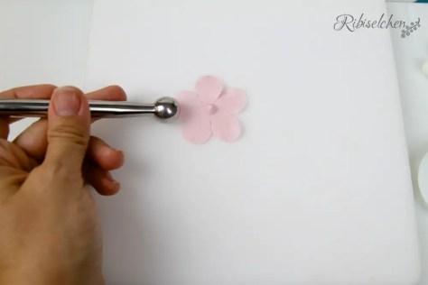 Anleitung für Pfirsichblüte aus Zucker