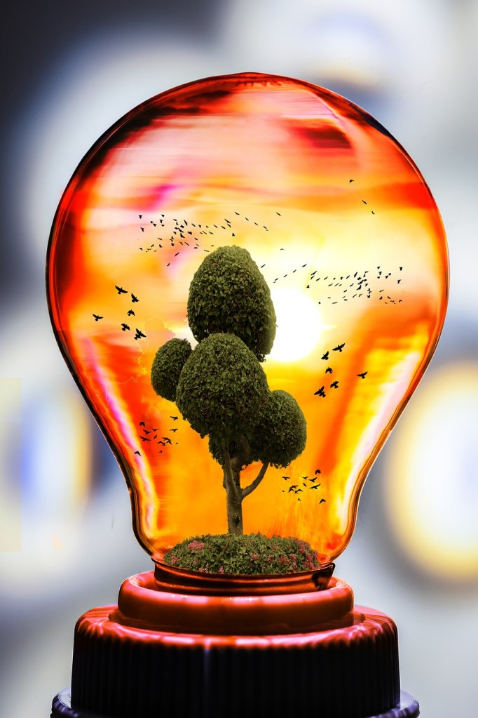 eco, nature, bulb