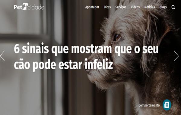 6 sinais que mostram que o seu cão pode estar infeliz – Pet Cidade