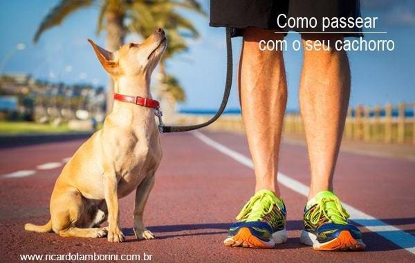 Veja como passear com o seu cachorro | Comando junto