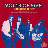 King Biscuit Boy - Mouth Of Steel