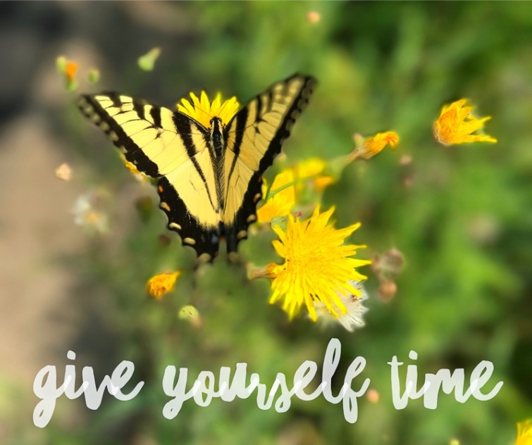 Butterfly - Give yourself time to change.