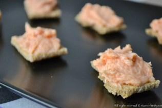 Mousse di salmone bimby
