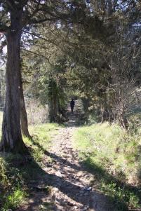 trekking-sassetta