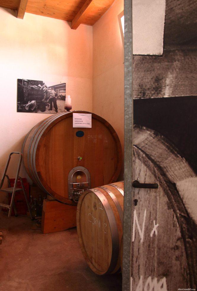 tenuta-santini-produttori-vini-rimini