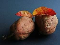 Marmellata di patate dolci o Dulce de batata