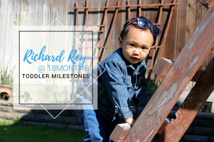 TODDLER MILESTONES