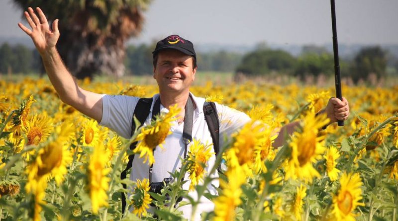 Sunflower trip to Lopburi Province
