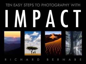 Free e-book: Ten Easy Steps to Photography with Impact