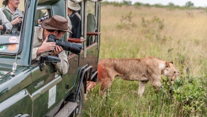 wildlife photography big cat masai mara safari with photographer richard costin
