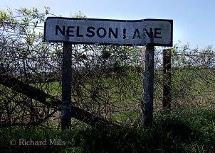 Nelson-Lane