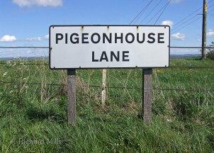 Pigeonhouse-Lane