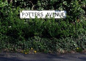 Potters-Avenue