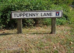 Tuppenny-Lane