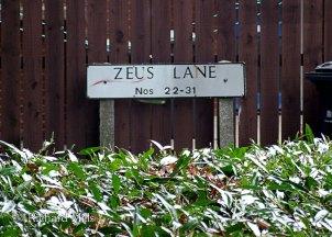 Zeus-Lane