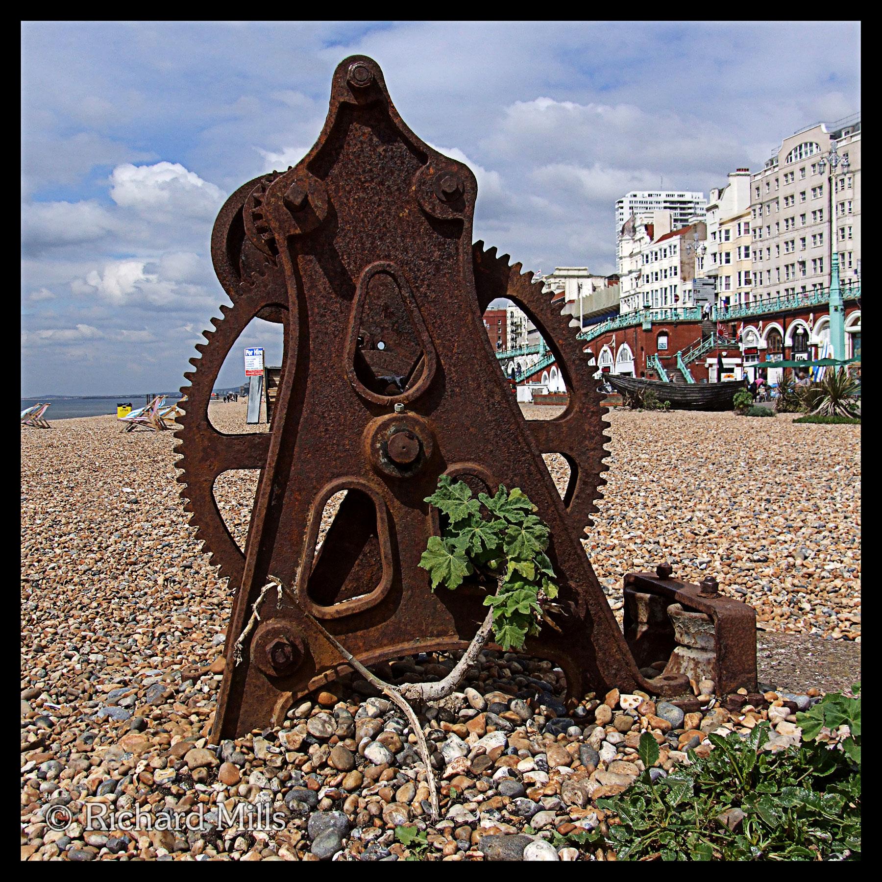 Brighton 6