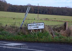 Ingoldfield-Lane---Bere-Forest---Dec-2011-139-e-©