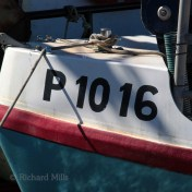 P 1016 Boat registration