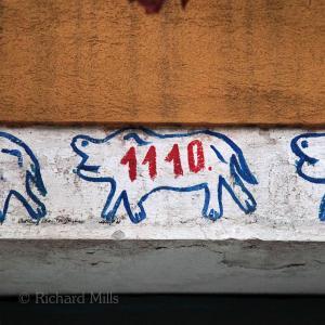 1110-8-Venice-5028-esq-©