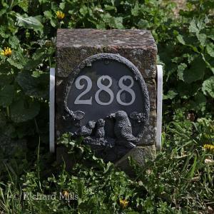288 Burridge - April 2012 067 esq sm © resize
