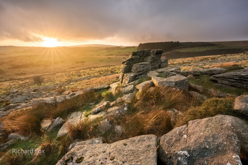 Crockern Golds, Crockern Tor, Dartmoor