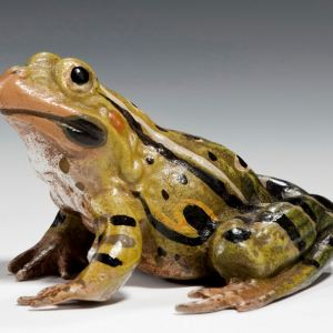 ANTIQUE LARGE COLD PAINTED BRONZE FIGURE OF A FROG