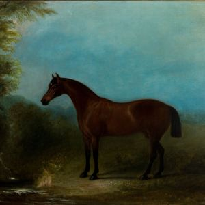 JOHN FERNELEY JNR-OIL PAINTING-HORSE
