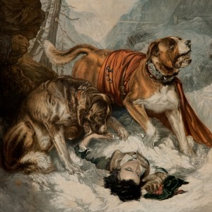 BAXTER PRINT - THE DOGS OF ST BERNARD