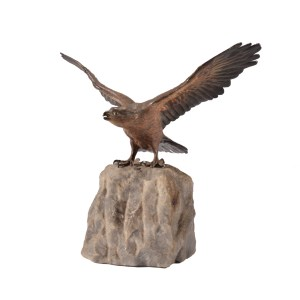 FRANZ XAVIER BERGMAN BRONZE EAGLE COLD PAINTED