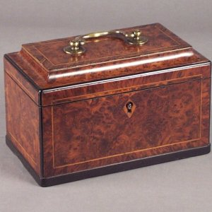 ANTIQUE TWO COMPARTMENT BURR YEW TEA CADDY