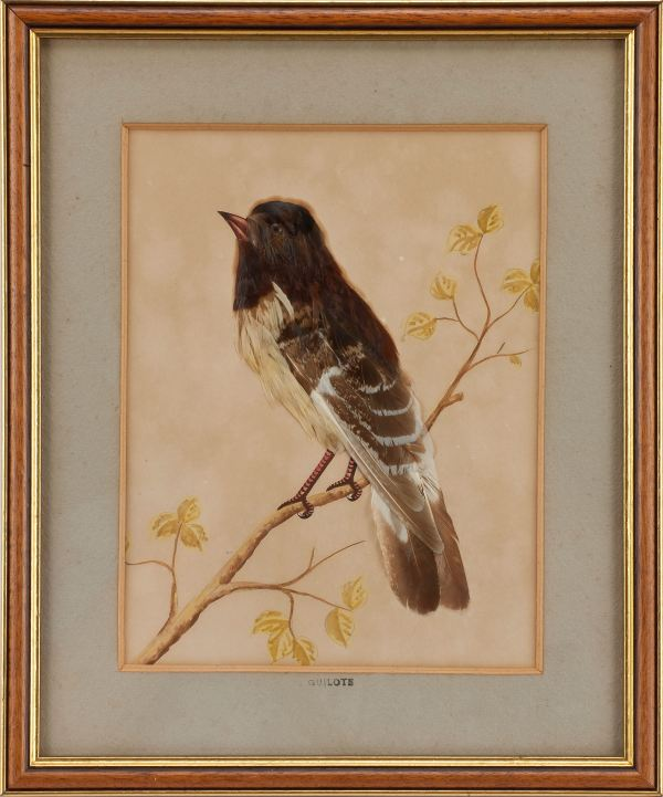 feather-pictures-pair-birds-French-antique-4073_1_4073