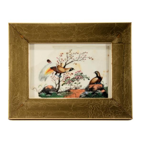 antique-chinese-watercolour-paintings-birds-DSC_0846