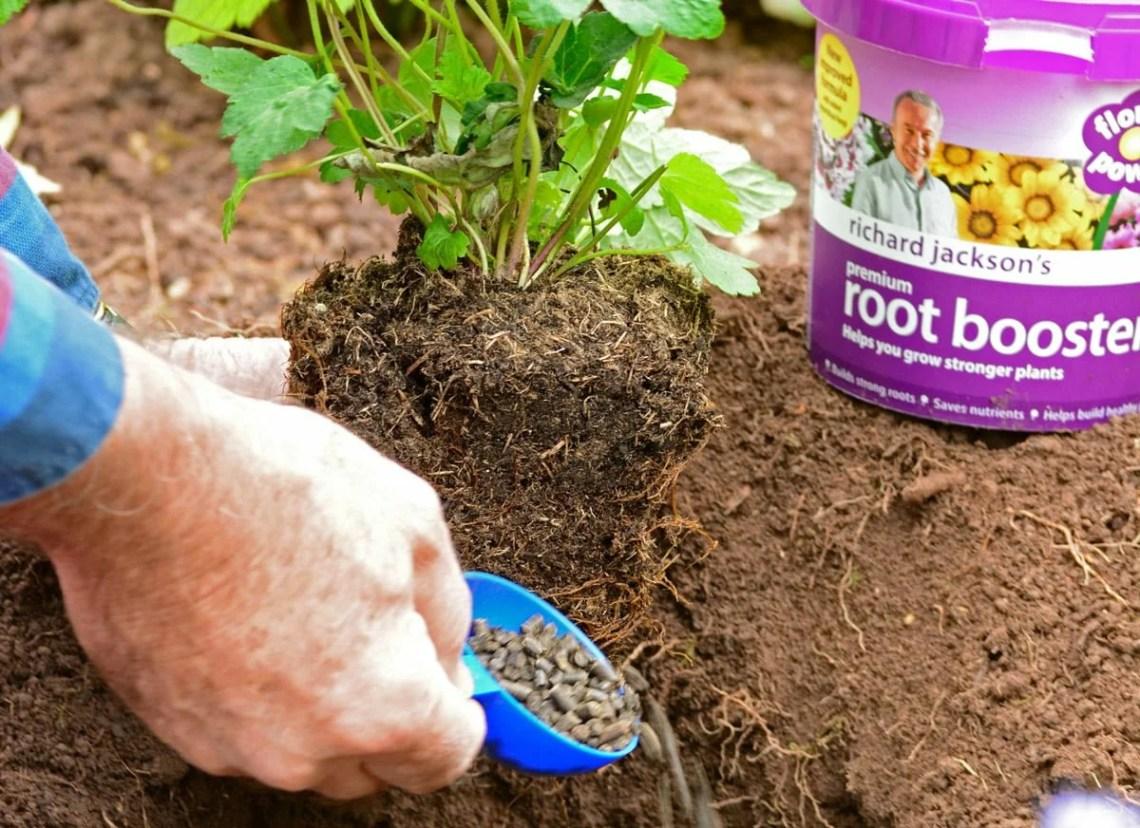 How Can I Garden More Naturally Richard Jackson Garden