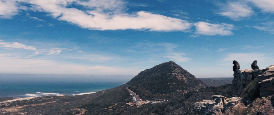 Video frame of a panoramic vista shot in Cape Point Nature Reserve, Cape Town, shot with the moondog labs anamorphic lens on an iPhone 7 Plus.