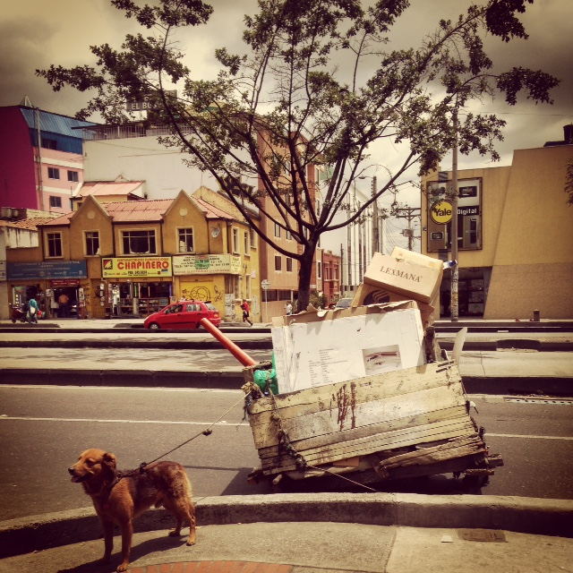 A reciclador on the Avenida Caracas