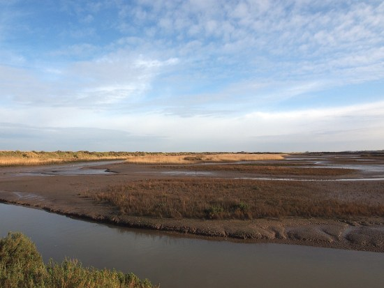 RSPB Titchwell Marsh on a crisp winter's day