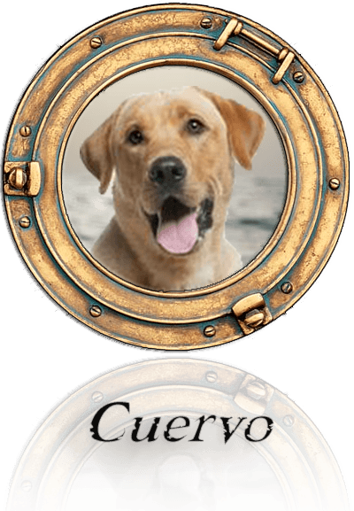 Cuervo reflection cropped