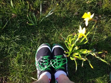 Past A Daffodil